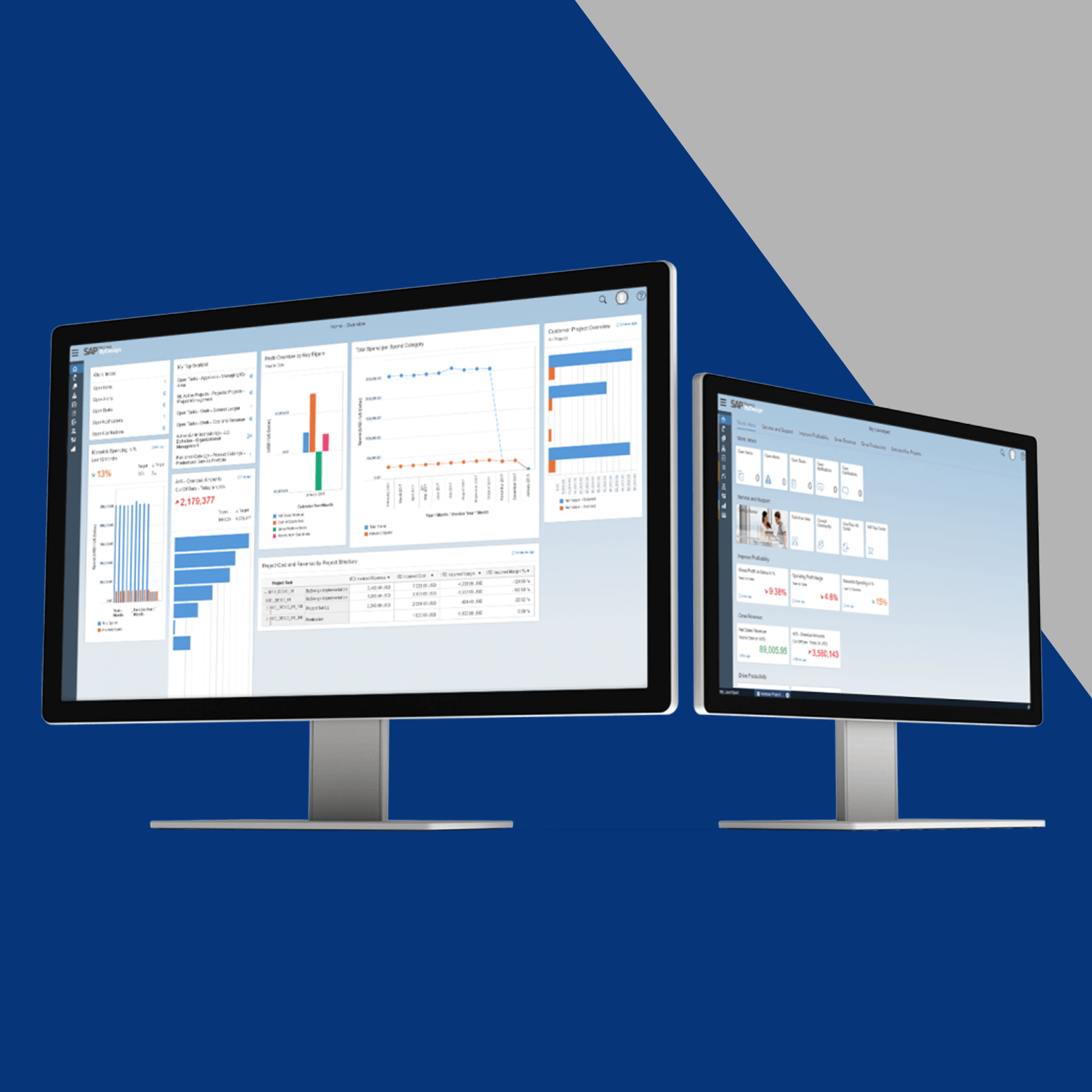 SAP Business By Design on Monitors