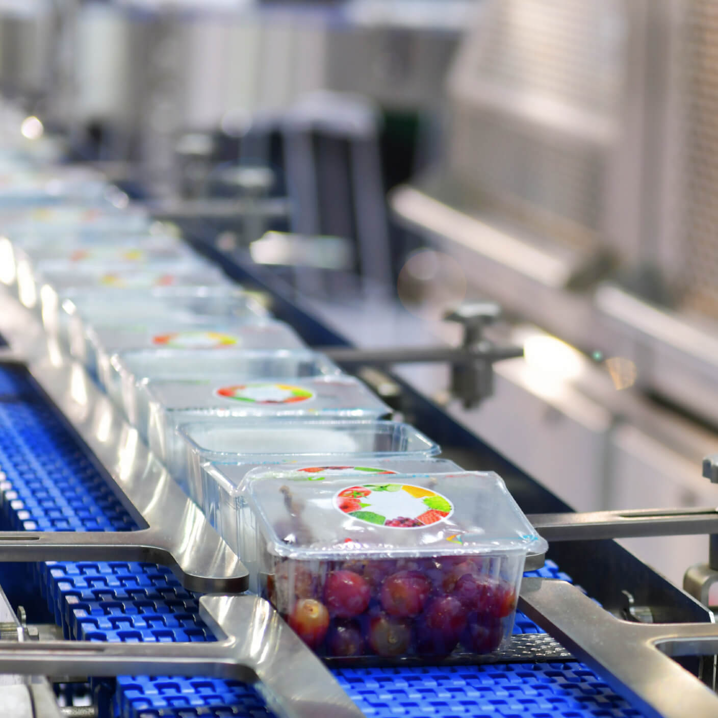 grapes in boxes on a conveyor belt